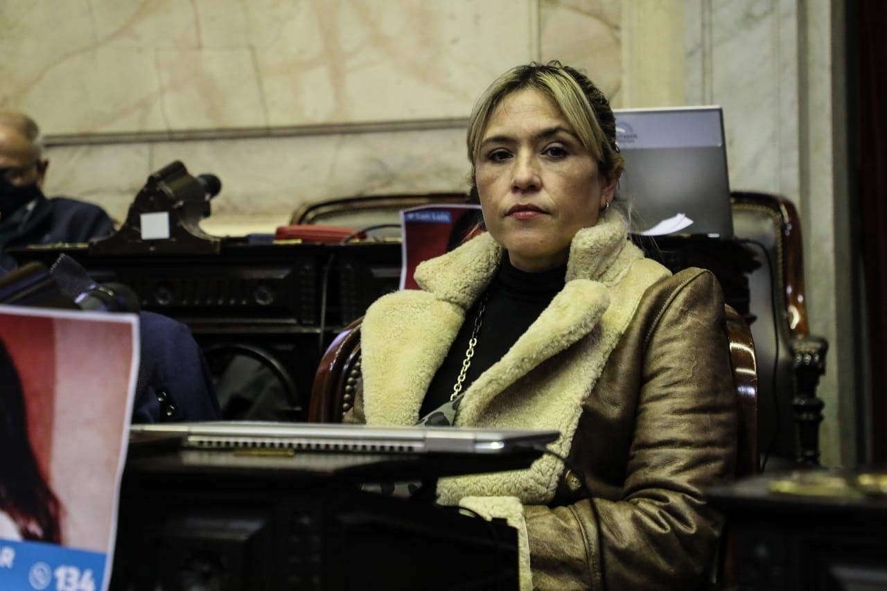 MABEL CARRIZO. Diputada nacional por Tucumán y dirigente kirchnerista.