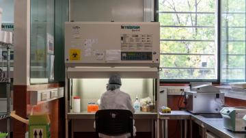 Tucumán registró dos nuevas muertes por covid-19 en las últimas 24 horas